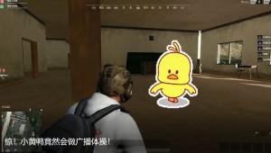 惊!小黄鸭竟然会做广播体操!
